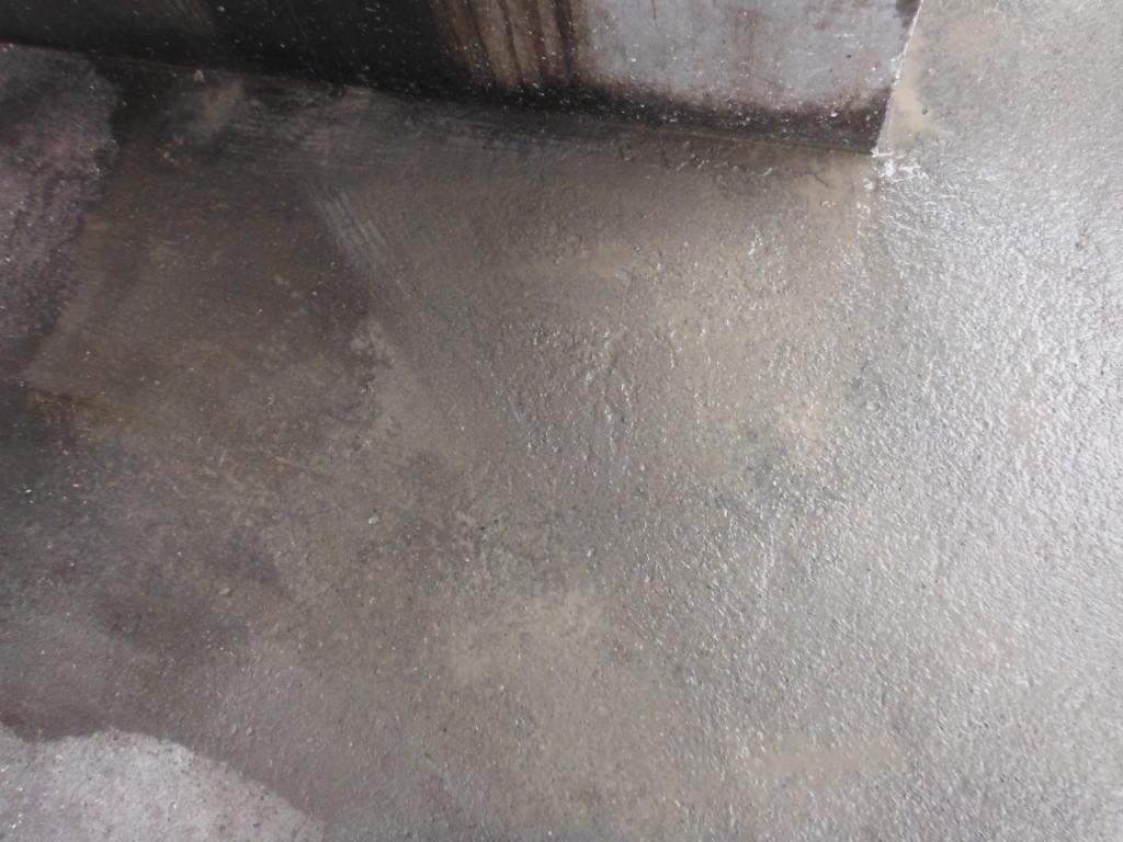工場 糞害・清掃・消毒1-34