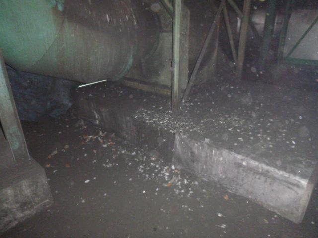 工場 糞害・清掃・消毒2-2