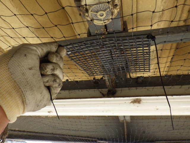 工場 防鳥ネット 庇10