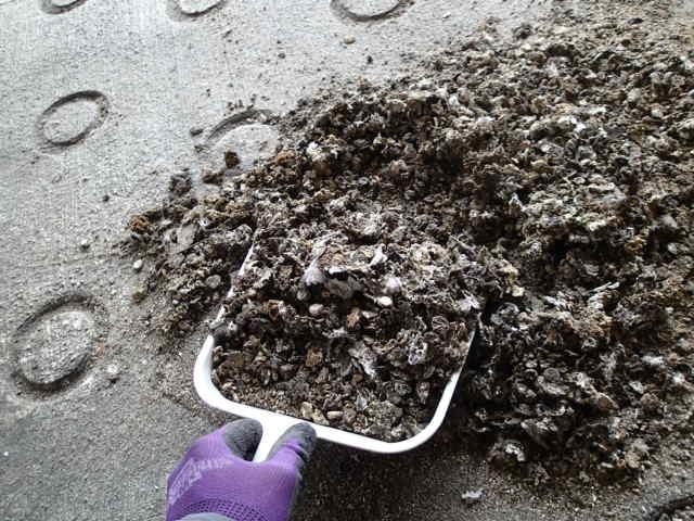 立体駐車場 糞害 清掃2